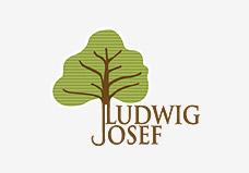 josef-ludwig